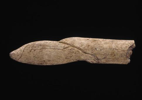 Os découpé et gravé figurant un phoque - Grotte Isturitz - Magdalénien, vers 15 000 ans - MAN86720