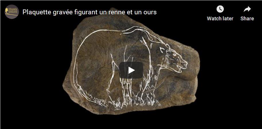 Copie d'écran de la vidéo du cartel de l'exposition Ours dans l'art Préhistorique
