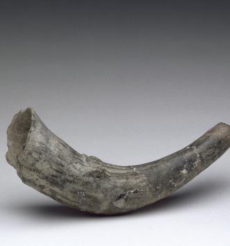 Trompe d'appel - 3ème millénaire avant J;-C. - MAN89180