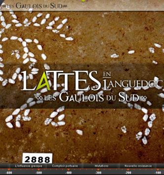 Lattes en Languedoc, les Gaulois du Sud