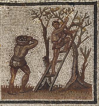 Pavement de mosaïque