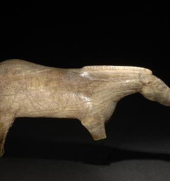 Le cheval de Lourdes